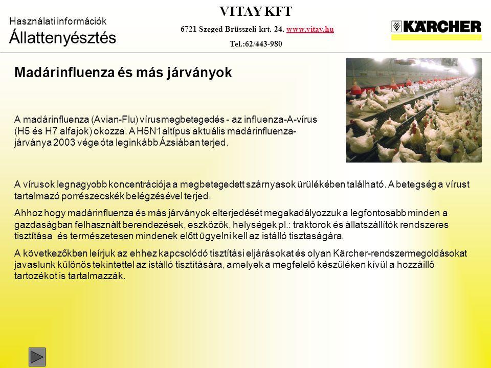 Használati információk Állattenyésztés VITAY KFT 6721 Szeged Brüsszeli krt. 24. www.vitay.huwww.vitay.hu Tel.:62/443-980 Madárinfluenza és más járvány