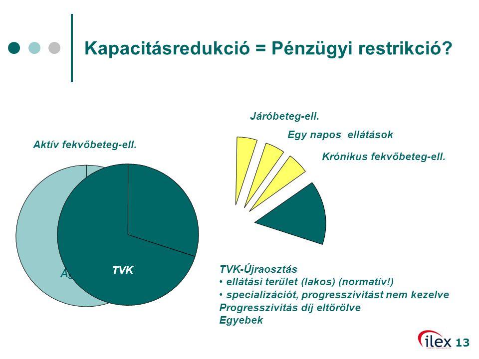 13 Ágyszám 27% Járóbeteg-ell. Egy napos ellátások Krónikus fekvőbeteg-ell. TVK Aktív fekvőbeteg-ell. TVK-Újraosztás • ellátási terület (lakos) (normat