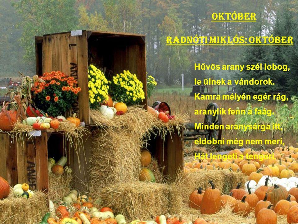 """szeptember Weöres Sándor: A tanév-nyitáskor """"Almát, körtét, szilvát, szőlőt hoz a szeptember, nekünk új tanévet, tudja minden ember…"""""""