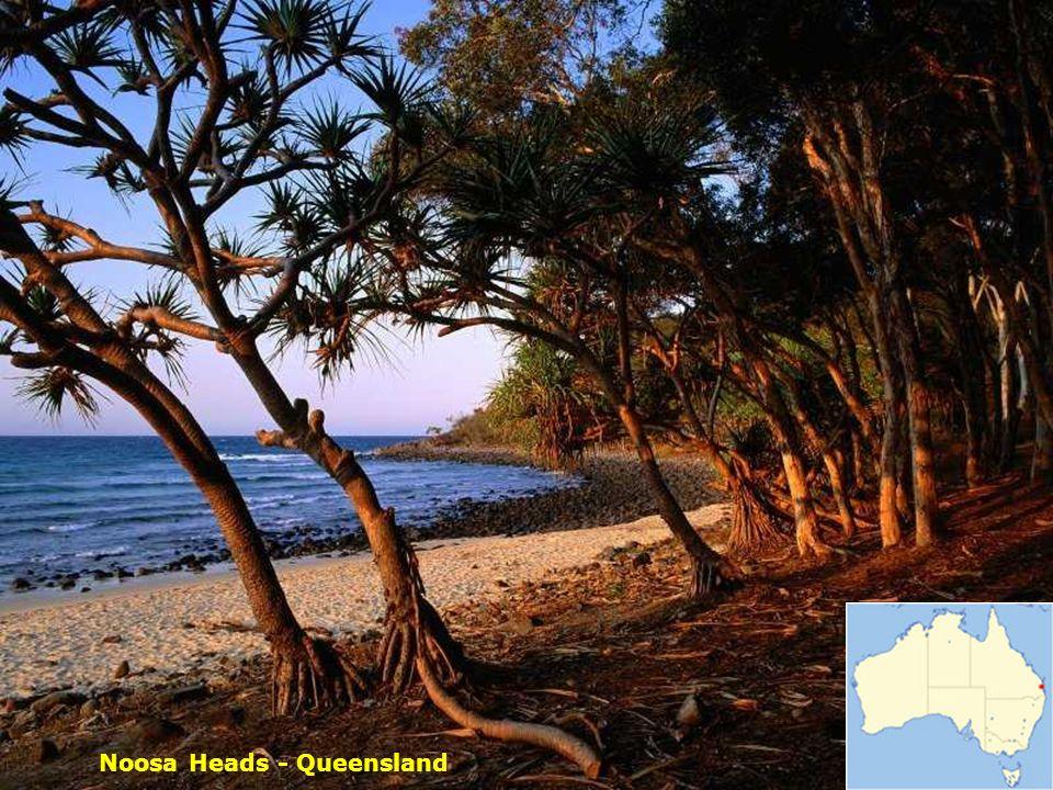 Brisbane – Queensland állam fővárosa
