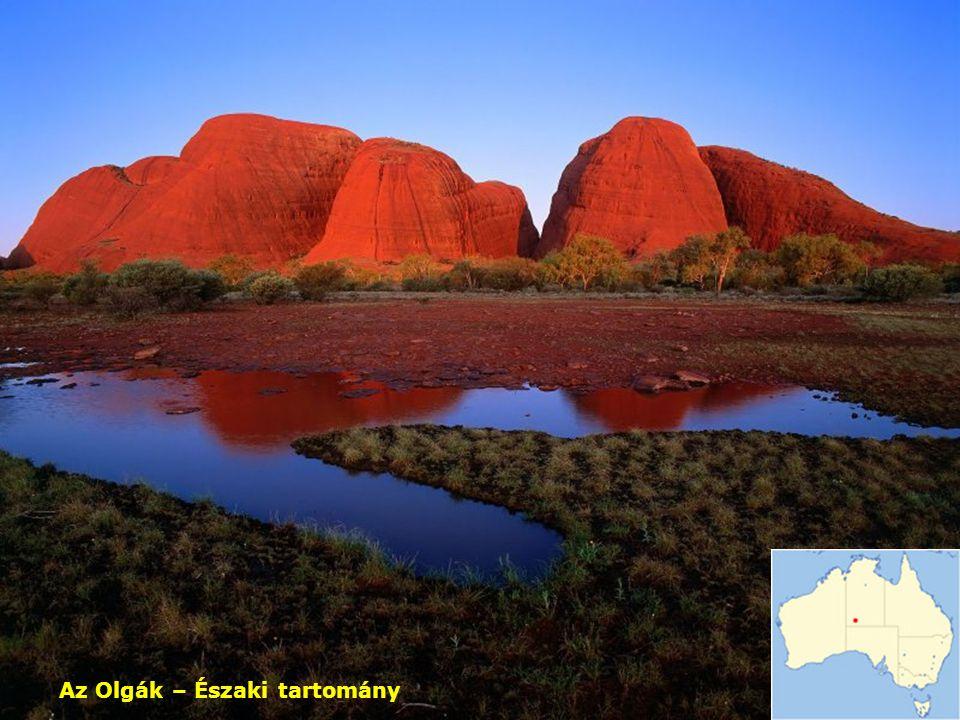 Uluru-Piton (a nemzeti park területén)