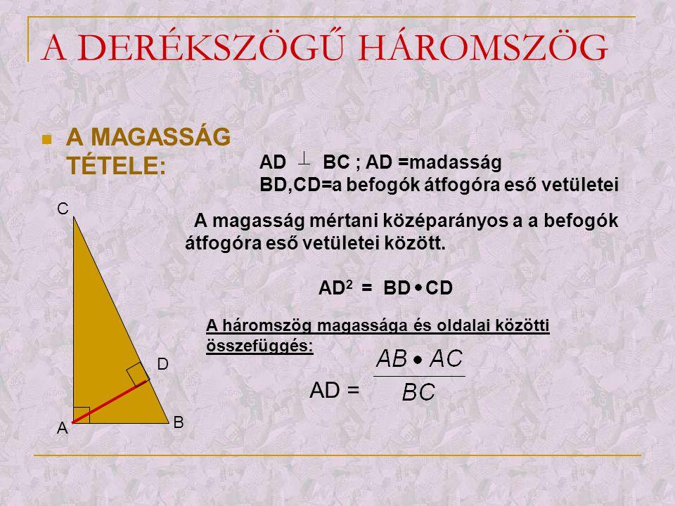 A DERÉKSZÖGŰ HÁROMSZÖG  A BEFOGÓ TÉTELE: A B D C AD BC ; AD =magasság BD,CD=a befogók átfogóra eső vetületei A befogó mértani középarányos az átfogó és a befogó átfogóra eső vetülete között.
