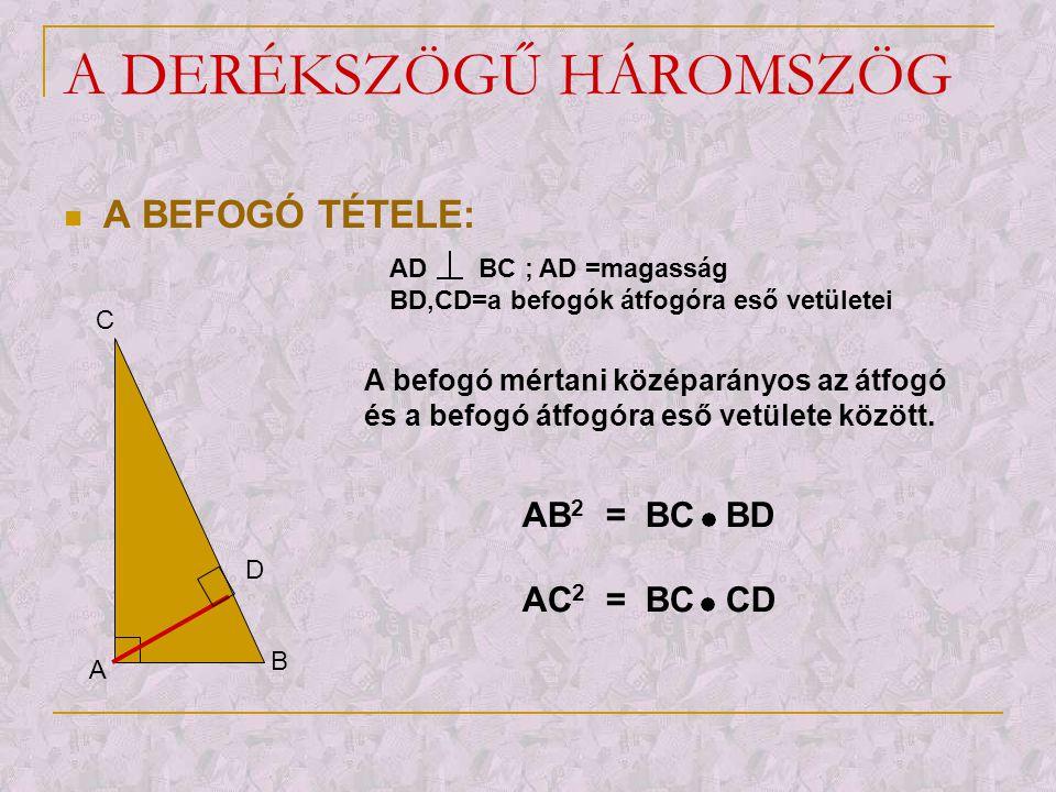A DERÉKSZÖGŰ HÁROMSZÖG  A BEFOGÓ TÉTELE: A B D C AD BC ; AD =magasság BD,CD=a befogók átfogóra eső vetületei A befogó mértani középarányos az átfogó