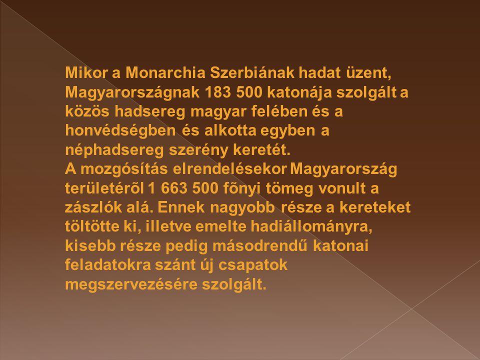 Mikor a Monarchia Szerbiának hadat üzent, Magyarországnak 183 500 katonája szolgált a közös hadsereg magyar felében és a honvédségben és alkotta egybe