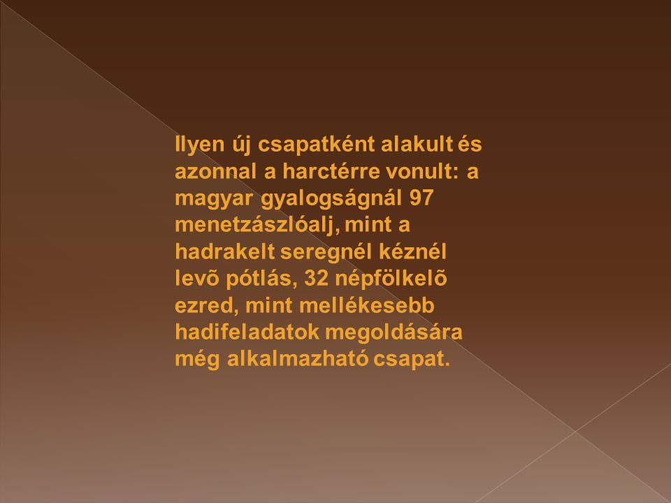 Ilyen új csapatként alakult és azonnal a harctérre vonult: a magyar gyalogságnál 97 menetzászlóalj, mint a hadrakelt seregnél kéznél levõ pótlás, 32 n