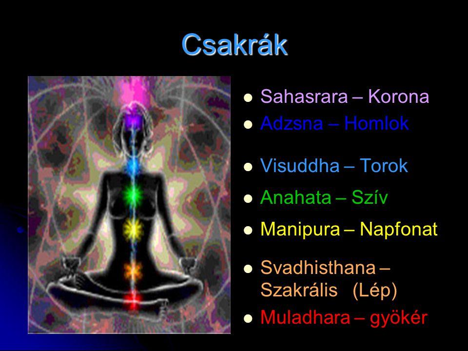 Csakrák   Sahasrara – Korona   Adzsna – Homlok   Visuddha – Torok   Anahata – Szív   Manipura – Napfonat   Svadhisthana – Szakrális (Lép)
