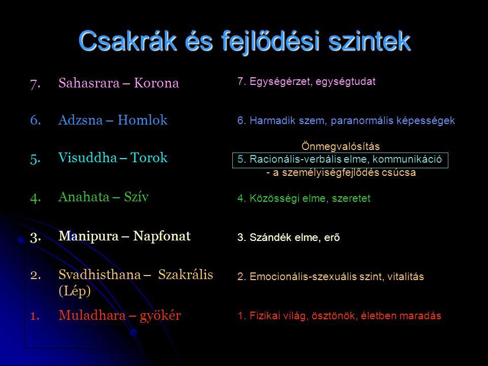 Csakrák és fejlődési szintek 7.Sahasrara – Korona 6.Adzsna – Homlok 5.Visuddha – Torok 4.Anahata – Szív 3.Manipura – Napfonat 2.Svadhisthana – Szakrális (Lép) 1.Muladhara – gyökér 7.