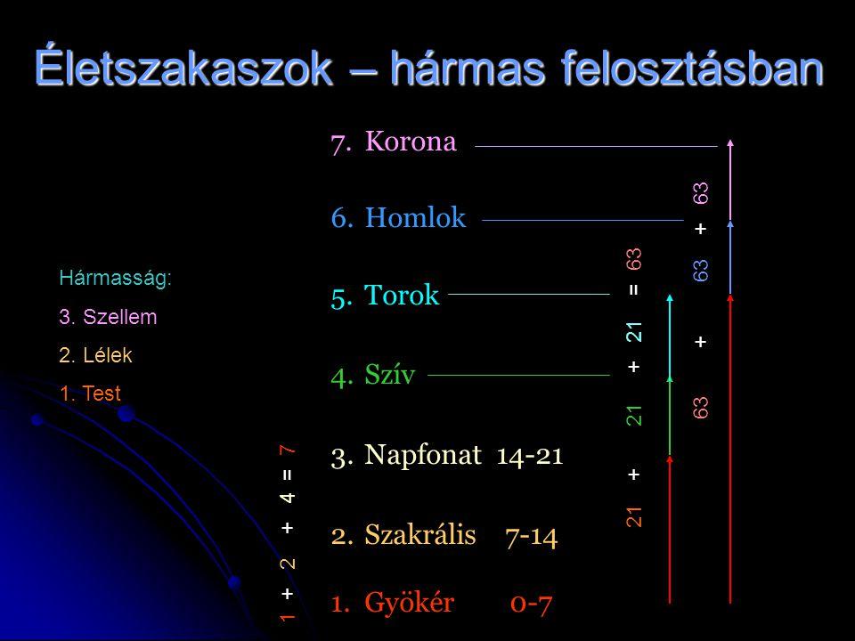 Életszakaszok – hármas felosztásban 7. 7.Korona 6. 6.Homlok 5. 5.Torok 4. 4.Szív 3. 3.Napfonat 14-21 2. 2.Szakrális 7-14 1. 1.Gyökér 0-7 1 + 2 + 4 = 7
