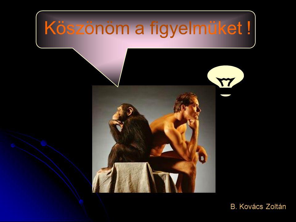 Köszönöm a figyelmüket ! B. Kovács Zoltán