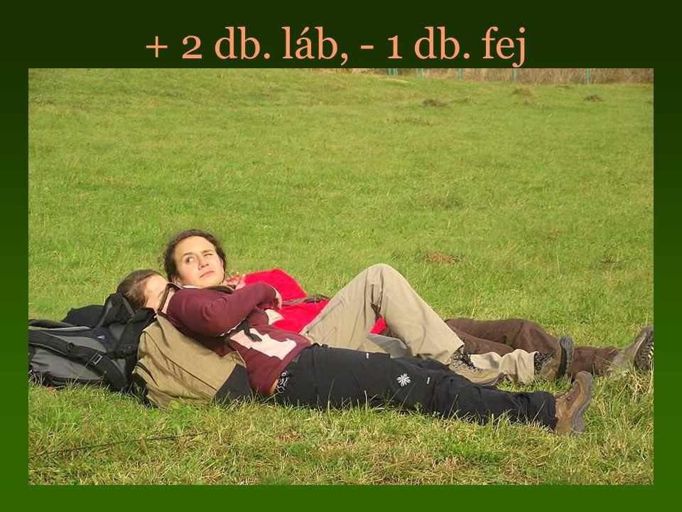 + 2 db. láb, - 1 db. fej