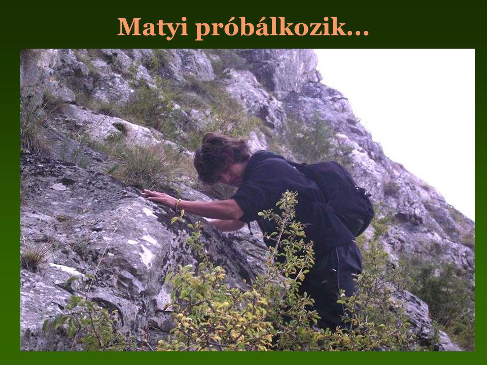 Matyi próbálkozik...