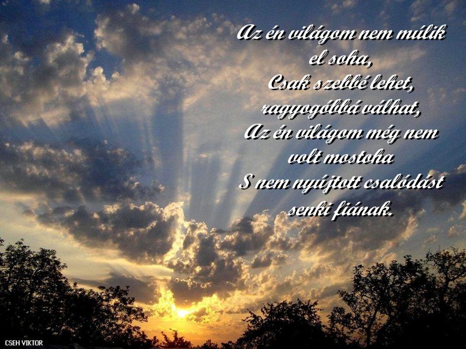 Az én világom nem múlik el soha, Csak szebbé lehet, ragyogóbbá válhat, Az én világom még nem volt mostoha S nem nyújtott csalódást senki fiának.