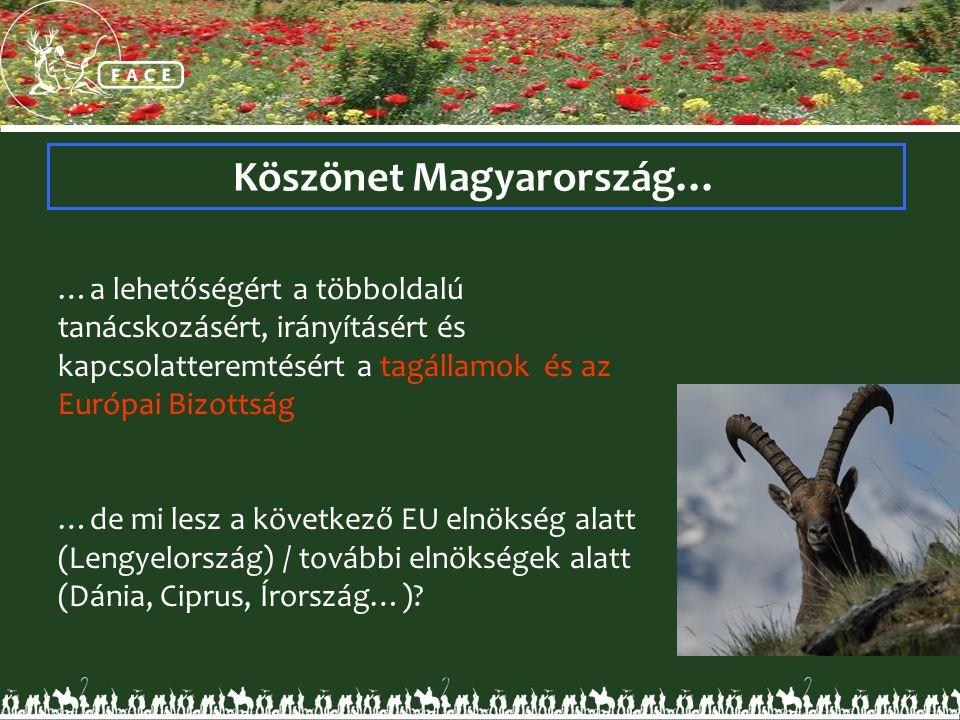 Köszönet Magyarország… …a lehetőségért a többoldalú tanácskozásért, irányításért és kapcsolatteremtésért a tagállamok és az Európai Bizottság …de mi lesz a következő EU elnökség alatt (Lengyelország) / további elnökségek alatt (Dánia, Ciprus, Írország…)