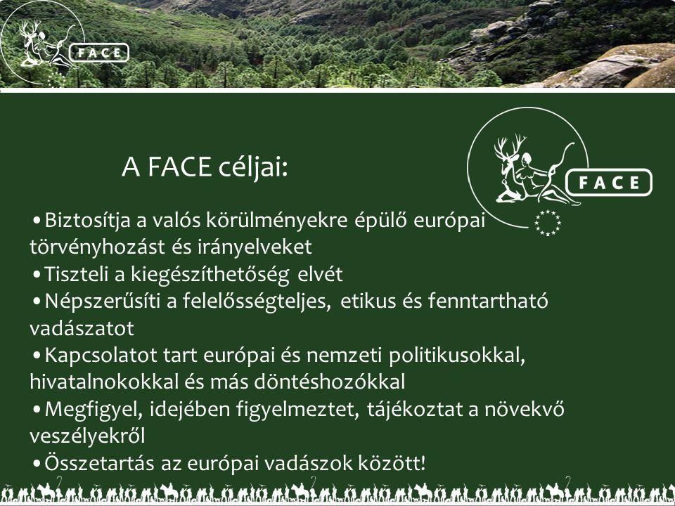 A FACE céljai: •Biztosítja a valós körülményekre épülő európai törvényhozást és irányelveket •Tiszteli a kiegészíthetőség elvét •Népszerűsíti a felelő