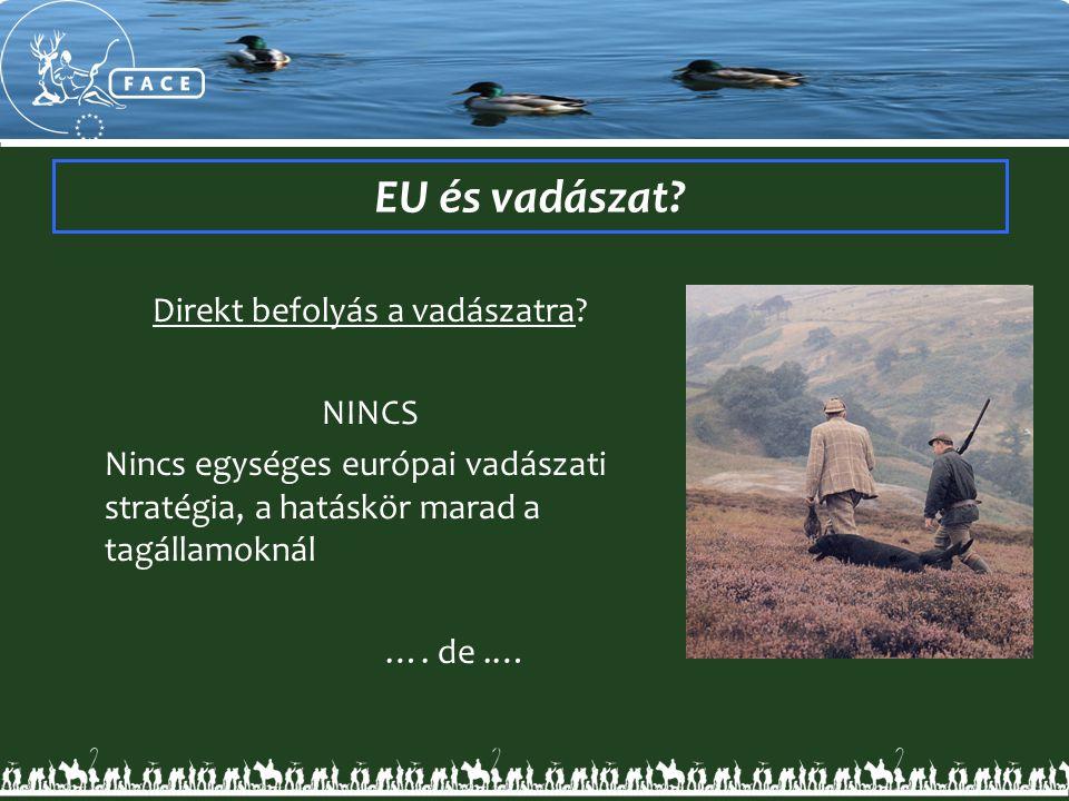 EU és vadászat? Direkt befolyás a vadászatra? NINCS Nincs egységes európai vadászati stratégia, a hatáskör marad a tagállamoknál …. de.…