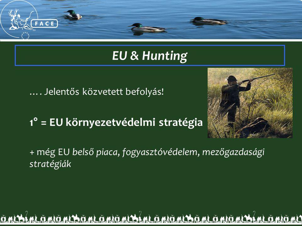 EU & Hunting …. Jelentős közvetett befolyás! 1° = EU környezetvédelmi stratégia + még EU belső piaca, fogyasztóvédelem, mezőgazdasági stratégiák