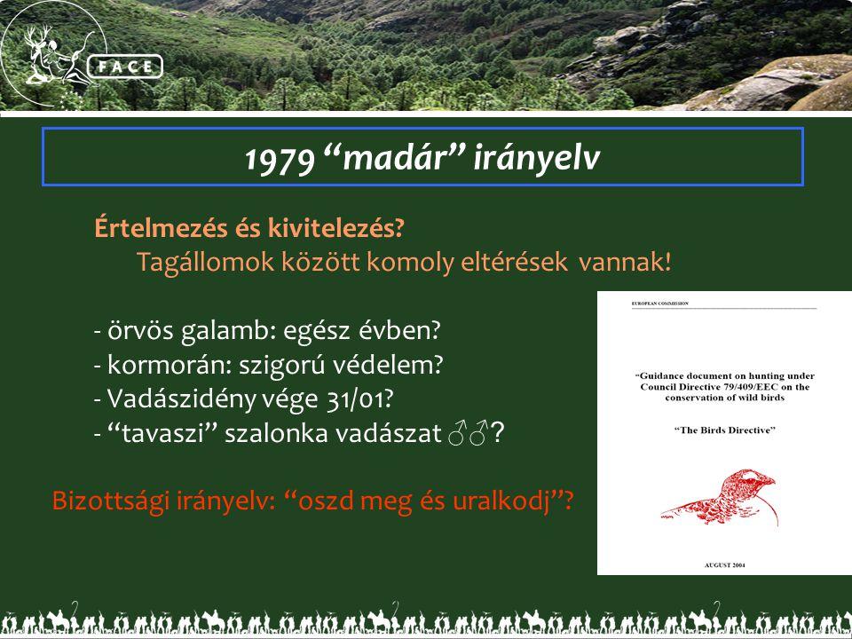 1979 madár irányelv Értelmezés és kivitelezés. Tagállomok között komoly eltérések vannak.