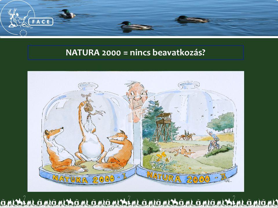 NATURA 2000 = nincs beavatkozás