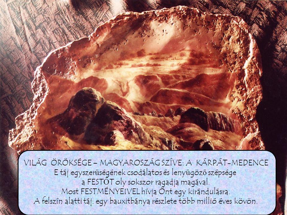 www.artlevy.hu LEVYNTGARD Kirándulásunkat a Zemplén hegyeinél fejezzük be, amikor március végén a völgyekben még ott bujkál néhány hófoszlány.