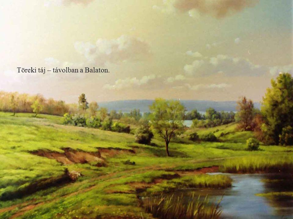 Töreki táj – távolban a Balaton.