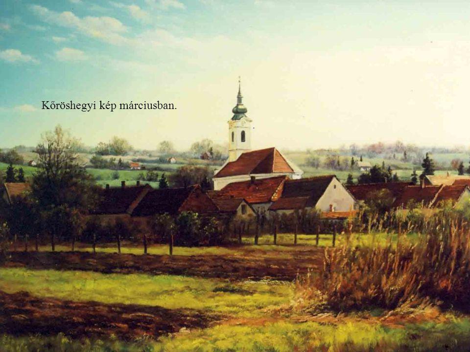 Kőröshegyi kép márciusban.