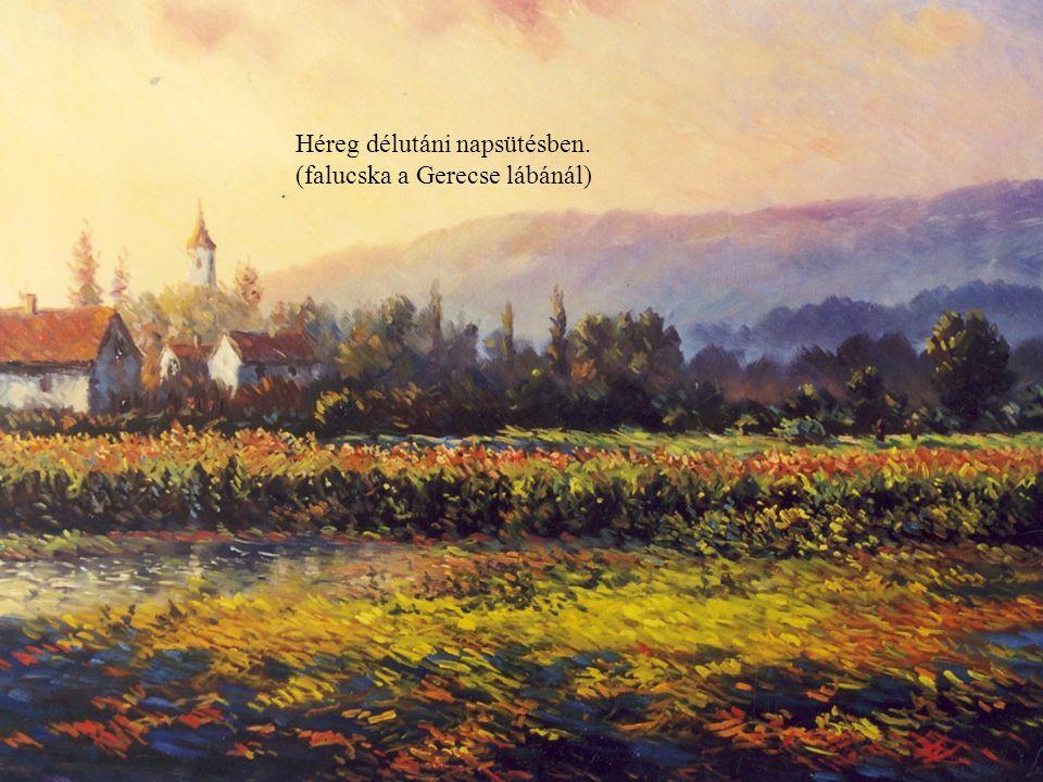 Októberi liget a Tisza árterében.