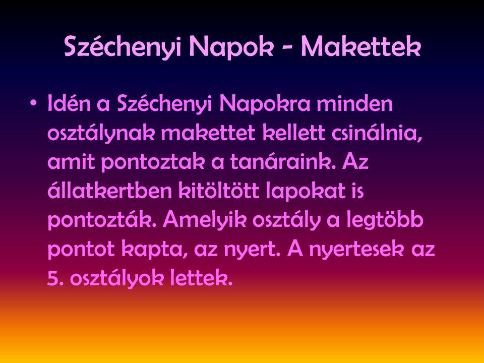Széchenyi Napok - Makettek •I•I dén a Széchenyi Napokra minden osztálynak makettet kellett csinálnia, amit pontoztak a tanáraink. Az állatkertben kitö
