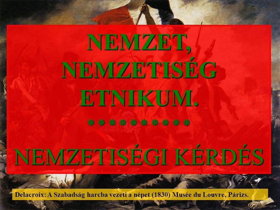Kisebbségek osztályozása Kisebbségek osztályozása forrás: KOVÁCS Z.: Népesség- és településföldrajz, Budapest, 2002, 52 – 55.