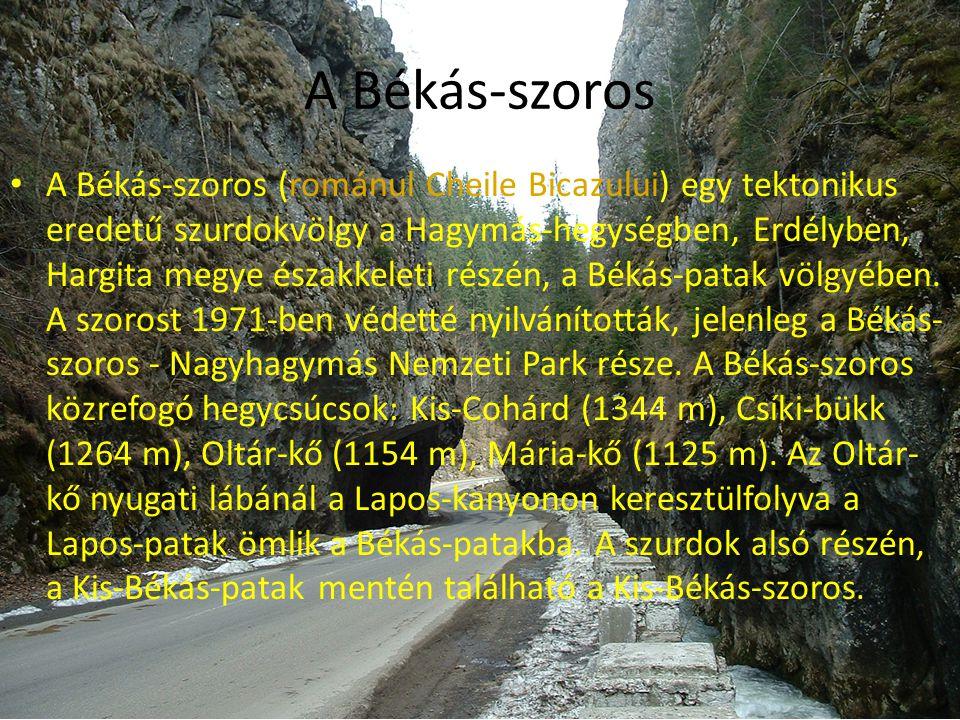 A Békás-szoros • A Békás-szoros (románul Cheile Bicazului) egy tektonikus eredetű szurdokvölgy a Hagymás-hegységben, Erdélyben, Hargita megye északkel