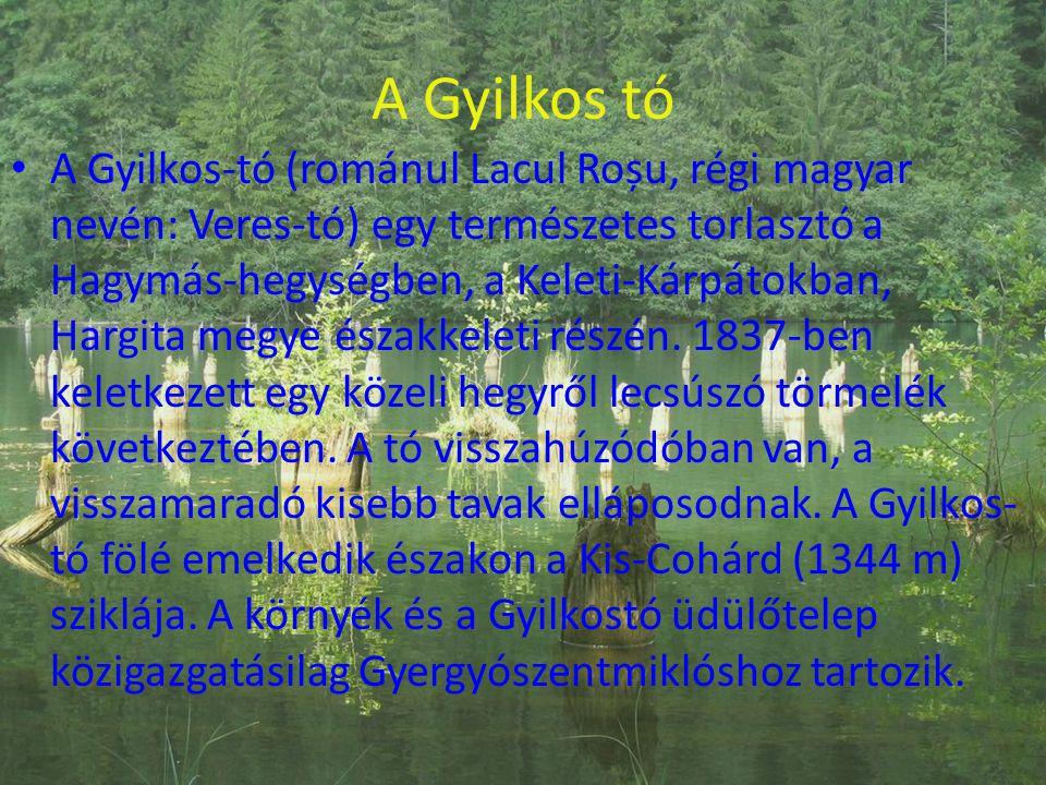 A Gyilkos tó • A Gyilkos-tó (románul Lacul Roșu, régi magyar nevén: Veres-tó) egy természetes torlasztó a Hagymás-hegységben, a Keleti-Kárpátokban, Ha