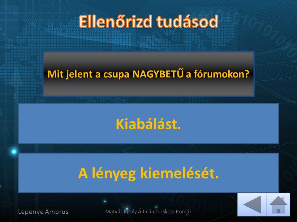 Lepenye Ambrus Mátyás Király Általános Iskola Pomáz Helyes! Sajnos nem jó! Mit jelent a csupa NAGYBETŰ a fórumokon? Kiabálást. A lényeg kiemelését.