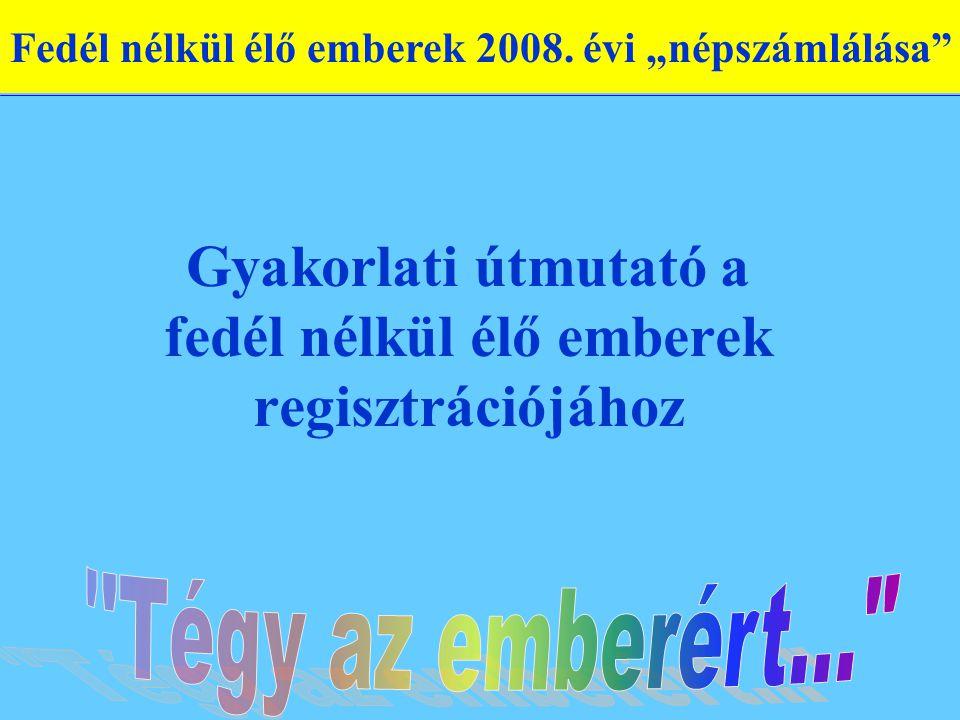 Gyakorlati útmutató a fedél nélkül élő emberek regisztrációjához Fedél nélkül élő emberek 2008.