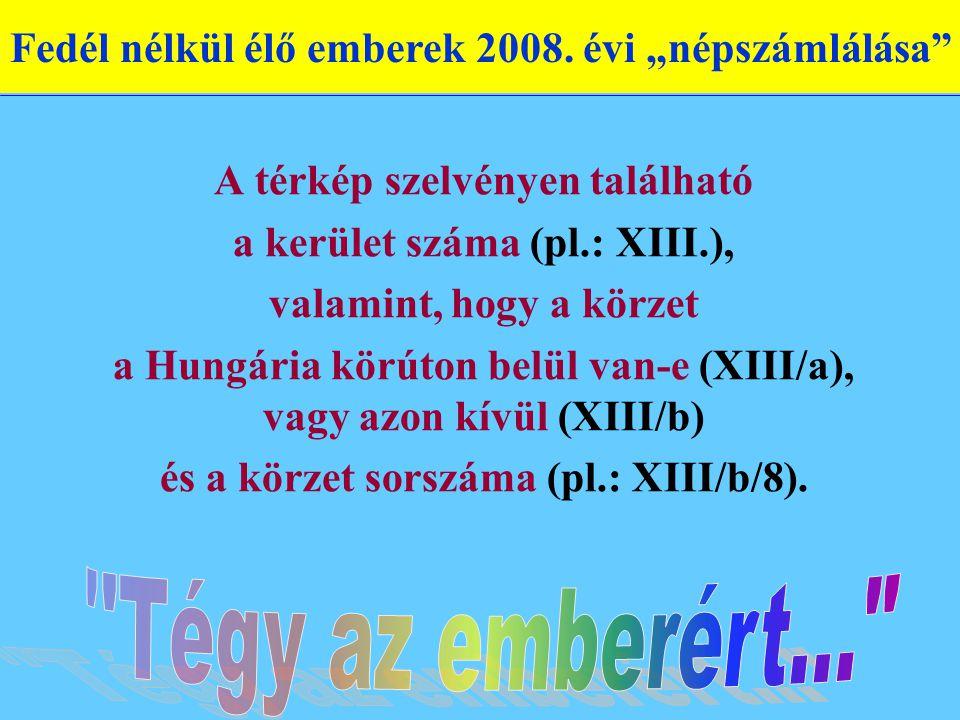 A térkép szelvényen található a kerület száma (pl.: XIII.), valamint, hogy a körzet a Hungária körúton belül van-e (XIII/a), vagy azon kívül (XIII/b) és a körzet sorszáma (pl.: XIII/b/8).