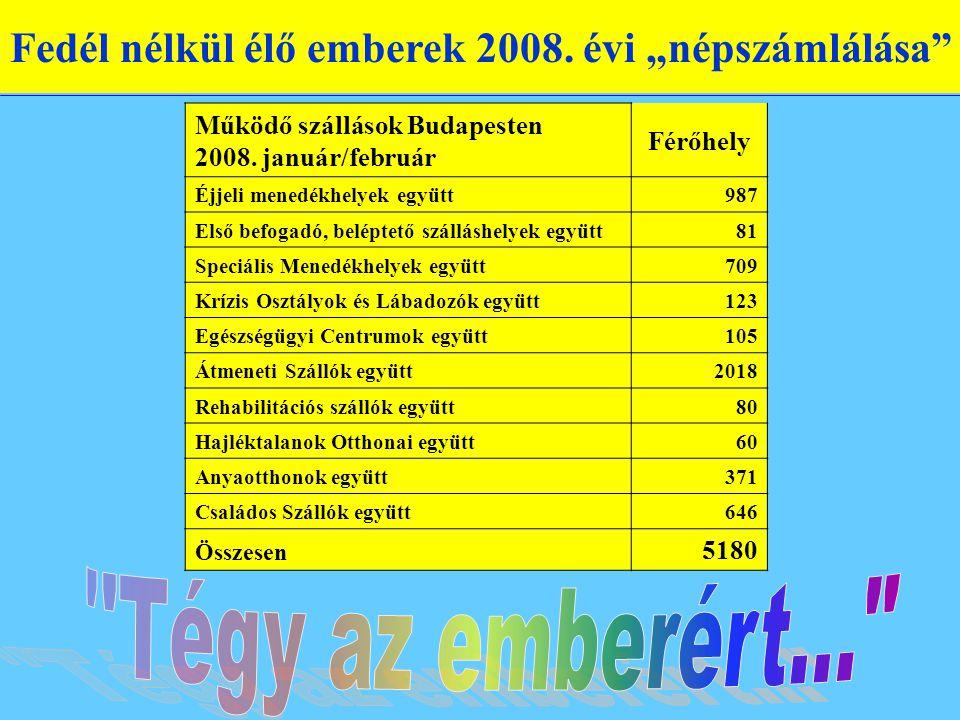 """Fedél nélkül élő emberek 2008. évi """"népszámlálása"""" Működő szállások Budapesten 2008. január/február Férőhely Éjjeli menedékhelyek együtt987 Első befog"""
