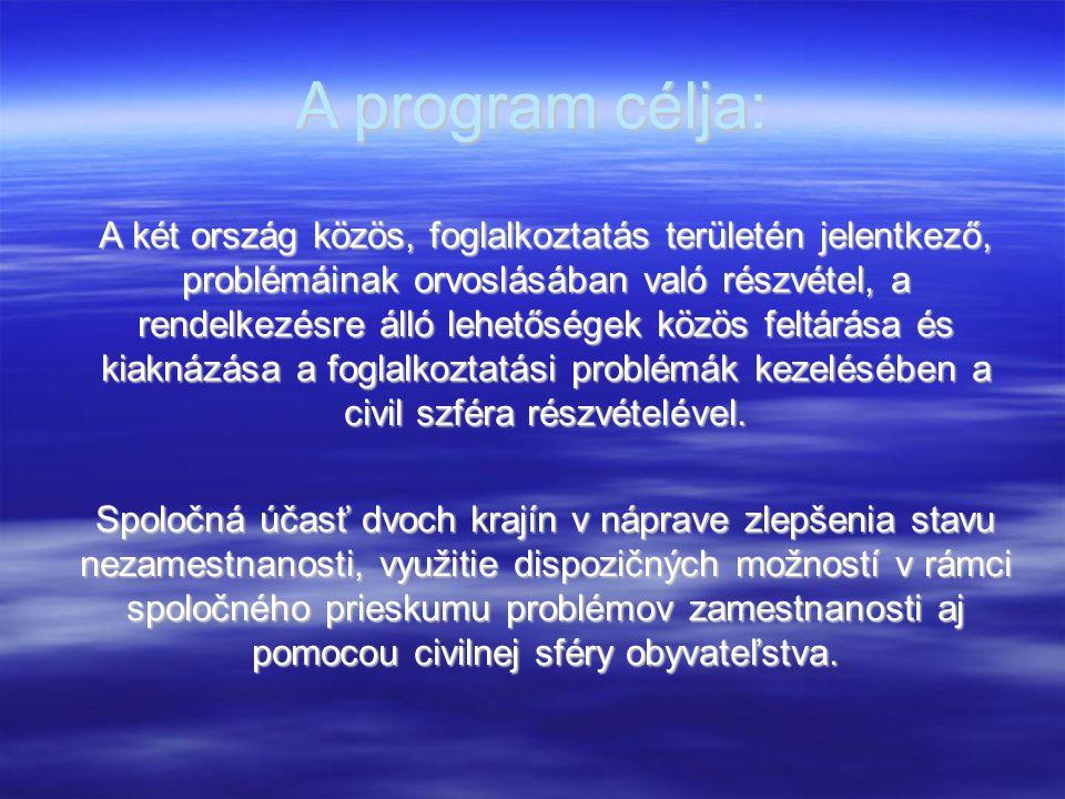 A program célja: A két ország közös, foglalkoztatás területén jelentkező, problémáinak orvoslásában való részvétel, a rendelkezésre álló lehetőségek k