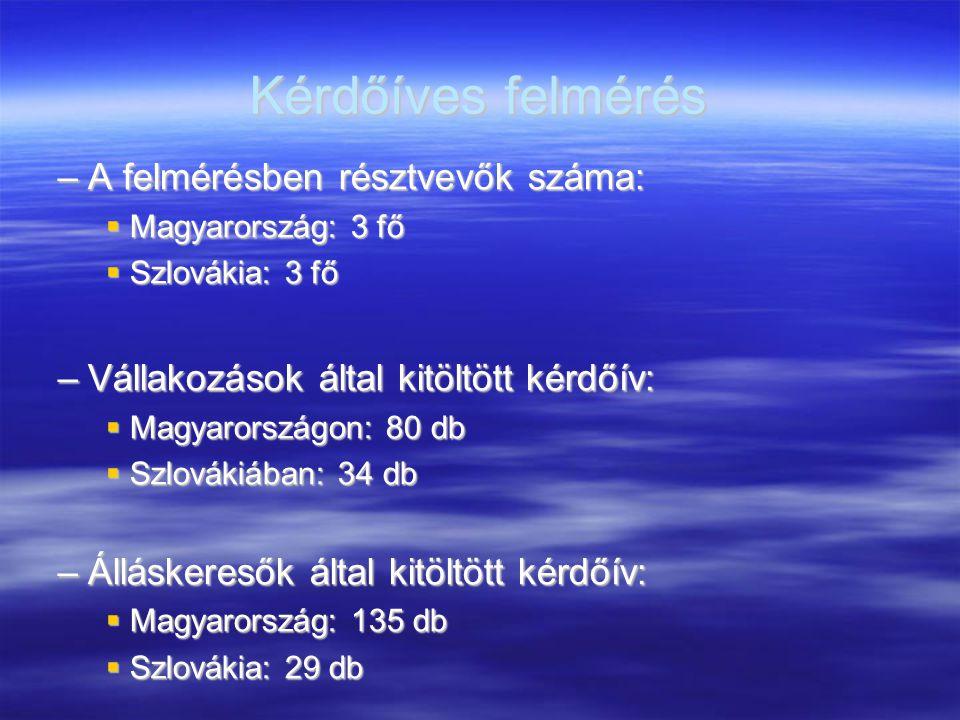 Kérdőíves felmérés –A felmérésben résztvevők száma:  Magyarország: 3 fő  Szlovákia: 3 fő –Vállakozások által kitöltött kérdőív:  Magyarországon: 80