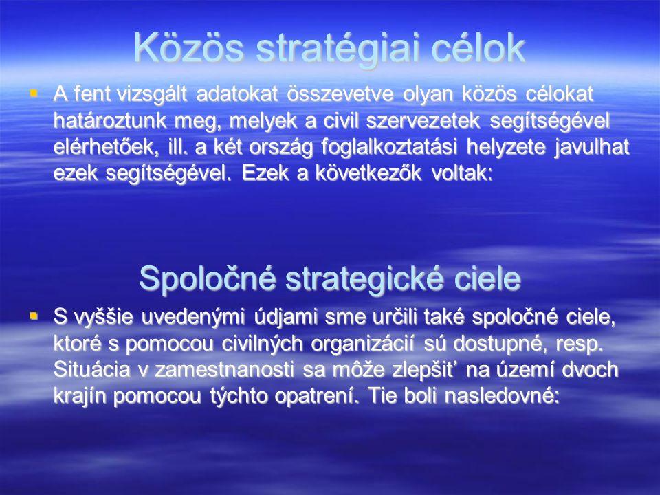 Közös stratégiai célok  A fent vizsgált adatokat összevetve olyan közös célokat határoztunk meg, melyek a civil szervezetek segítségével elérhetőek,