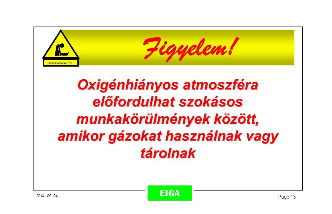 2014. 06. 24. Page 13 EIGA Figyelem! Oxigénhiányos atmoszféra előfordulhat szokásos munkakörülmények között, amikor gázokat használnak vagy tárolnak E