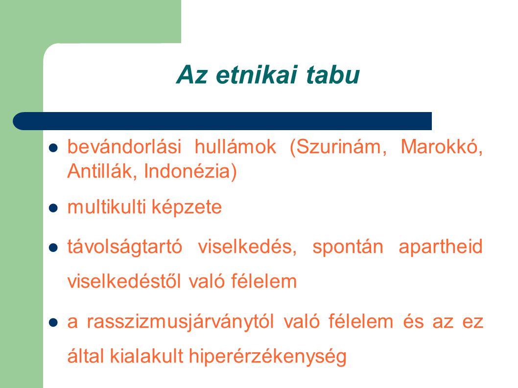 A magánszféra tabuja  Személyes életszférához való jog (Grondwet Artikel 1.10)  nagyon erős public-private elkülönülés  a magánéletbe való beavatkozás hallgatólagos tilalma (Srebrenica-effekt)  a Vrolijkstraat tanulsága: ne láss, ne hallj, ne szólj, ne csinálj semmit!