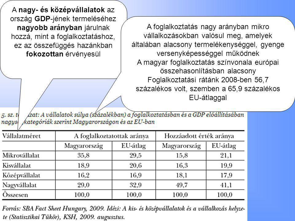 A nagy- és középvállalatok az ország GDP-jének termeléséhez nagyobb arányban járulnak hozzá, mint a foglalkoztatáshoz, ez az összefüggés hazánkban fokozottan érvényesül A foglalkoztatás nagy arányban mikro vállalkozásokban valósul meg, amelyek általában alacsony termelékenységgel, gyenge versenyképességgel működnek A magyar foglalkoztatás színvonala európai összehasonlításban alacsony Foglalkoztatási rátánk 2008-ben 56,7 százalékos volt, szemben a 65,9 százalékos EU-átlaggal