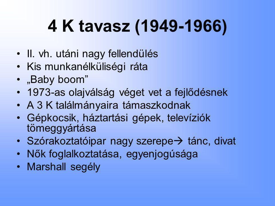 4 K nyár (1966-1982) •Technikai újdonságok használata •Lézerek, fényképezőgépek, zsebszámológép, mikrohullámú sütő, magnók, tévéműsorok áradata •Űrkutatás fejlődése