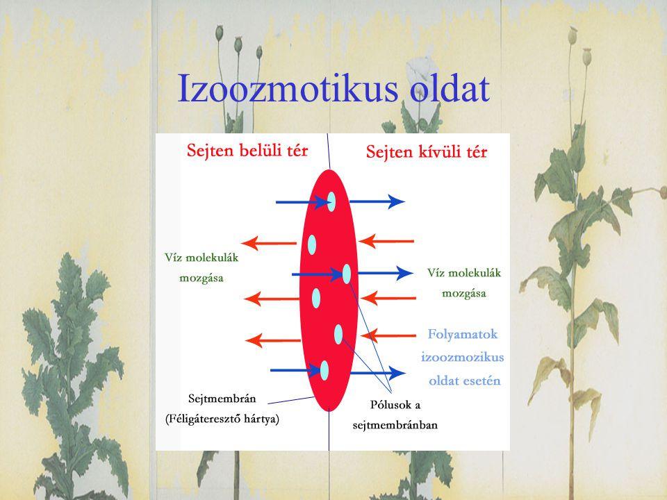 Izoozmotikus oldat