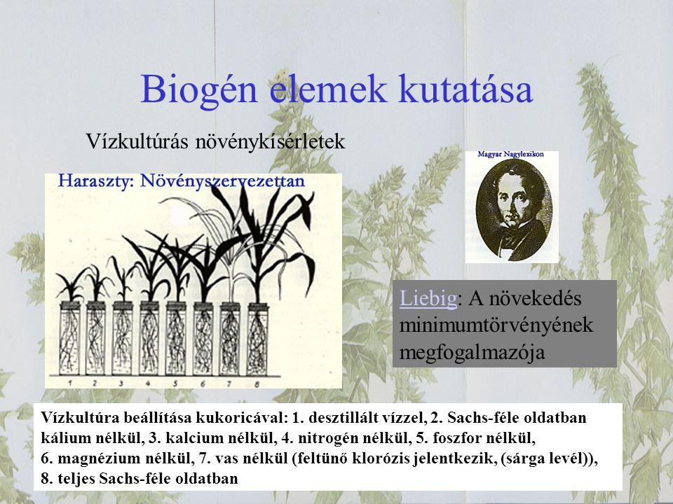 Biogén elemek kutatása Vízkultúrás növénykísérletek LiebigLiebig: A növekedés minimumtörvényének megfogalmazója Vízkultúra beállítása kukoricával: 1.