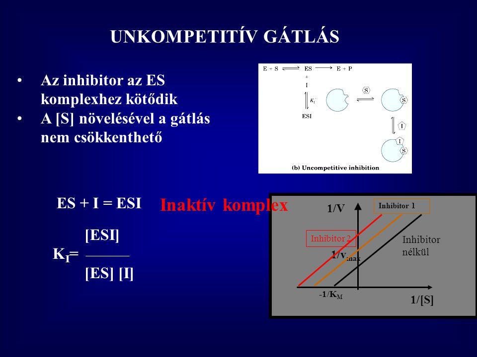 1/[S] 1/V 1/v max -1/K M Inhibitor nélkül UNKOMPETITÍV GÁTLÁS •Az inhibitor az ES komplexhez kötődik •A [S] növelésével a gátlás nem csökkenthető ES + I = ESI [ESI] K I = ________ [ES] [I] Inhibitor 1 Inhibitor 2 Inaktív komplex