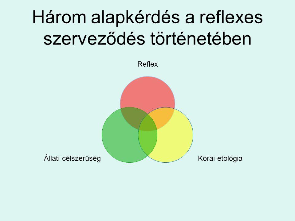 Három alapkérdés a reflexes szerveződés történetében Reflex Korai etológia Állati célszerűség