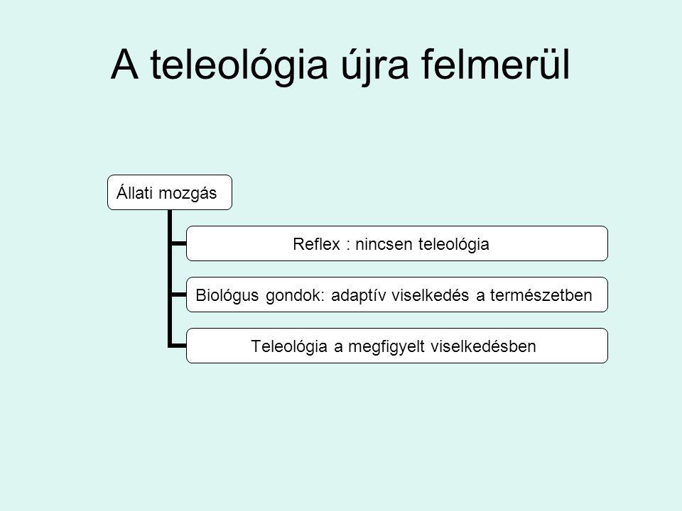 A teleológia újra felmerül Állati mozgás Reflex : nincsen teleológia Biológus gondok: adaptív viselkedés a természetben Teleológia a megfigyelt viselkedésben