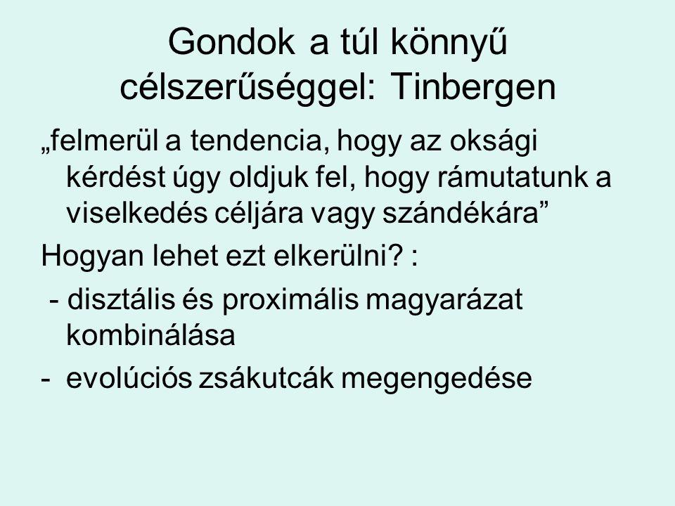"""Gondok a túl könnyű célszerűséggel: Tinbergen """"felmerül a tendencia, hogy az oksági kérdést úgy oldjuk fel, hogy rámutatunk a viselkedés céljára vagy szándékára Hogyan lehet ezt elkerülni."""