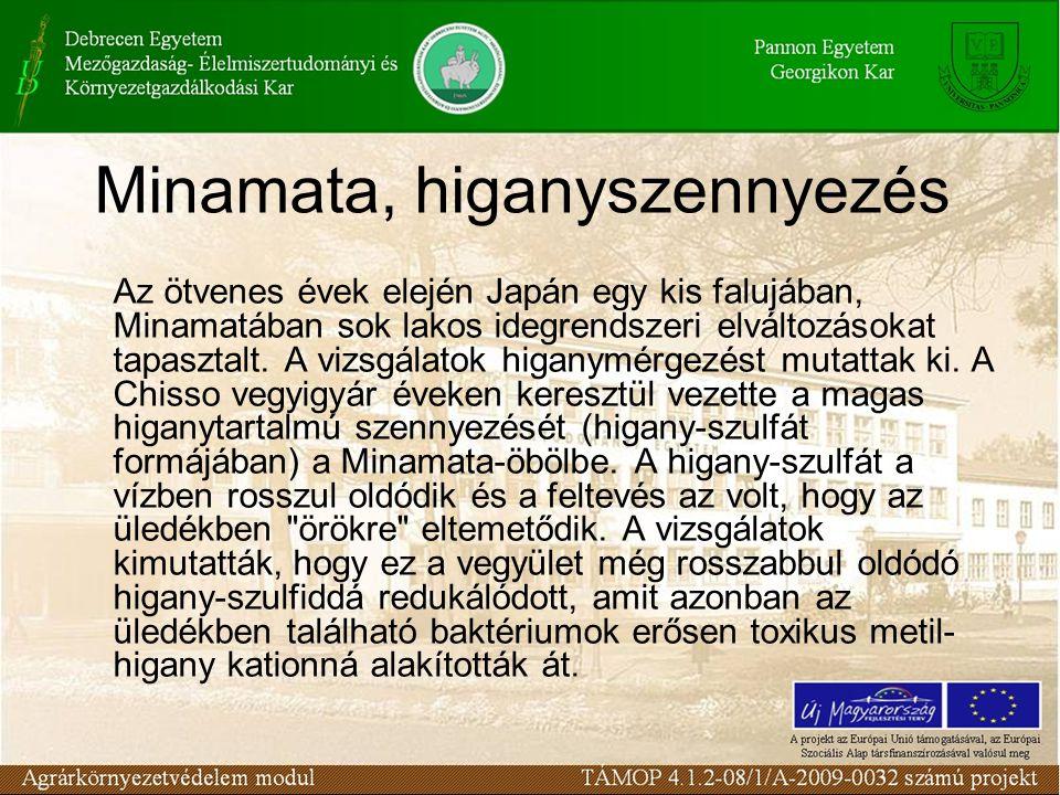 Minamata, higanyszennyezés Az ötvenes évek elején Japán egy kis falujában, Minamatában sok lakos idegrendszeri elváltozásokat tapasztalt.