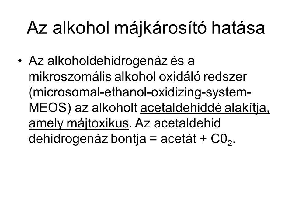 Az alkohol májkárosító hatása •Az alkoholdehidrogenáz és a mikroszomális alkohol oxidáló redszer (microsomal-ethanol-oxidizing-system- MEOS) az alkoho