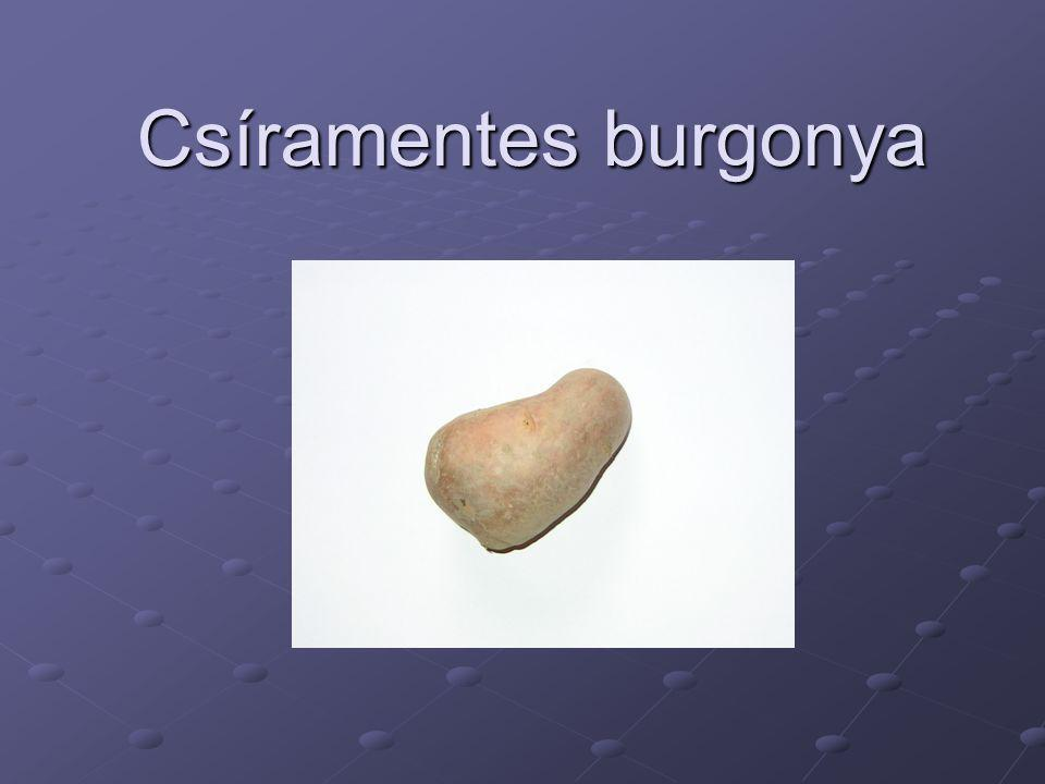 Csíramentes burgonya
